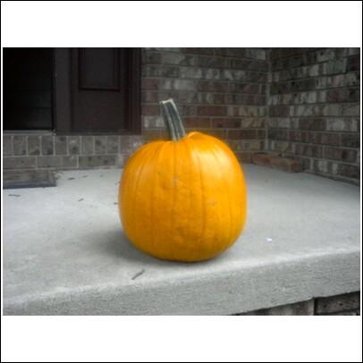 Betsy pumpkin