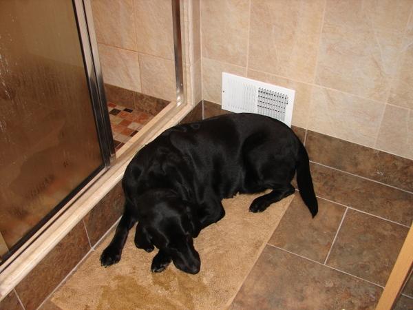 Clark shower mat